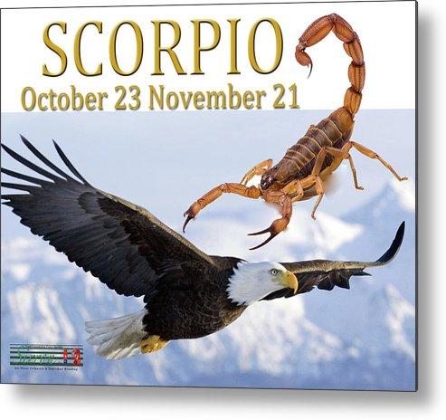 Scorpian Metal Print featuring the photograph Scorpio Astrology Art by Sirron Kyles