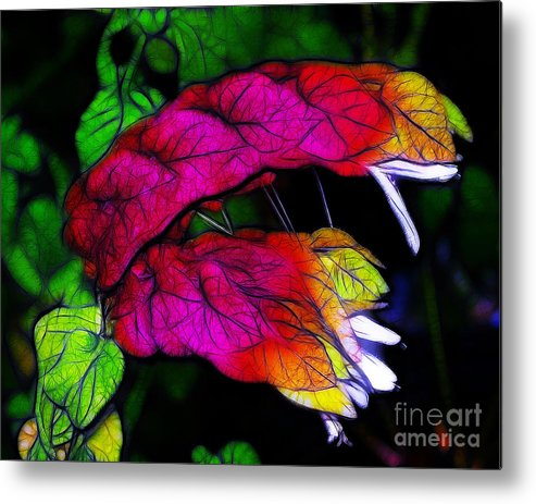 Pink Metal Print featuring the photograph Shrimp Plant by Judi Bagwell
