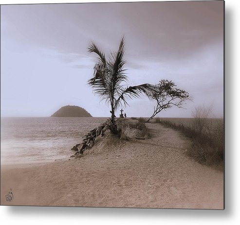 Palm Tree Metal Print featuring the photograph Soledad by Kathy Simandl