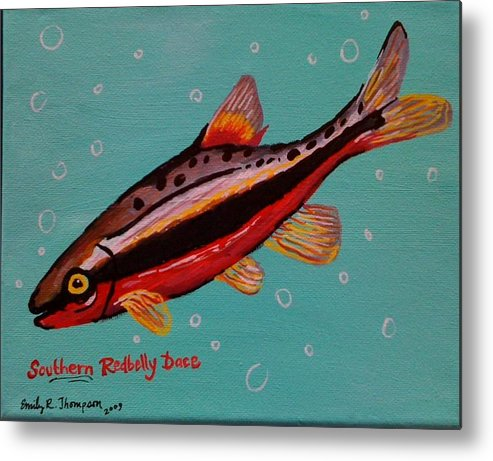 Fish Whimsical Animal Tropical Dace Redbelly Metal Print featuring the painting Southern Redbelly Dace by Emily Reynolds Thompson