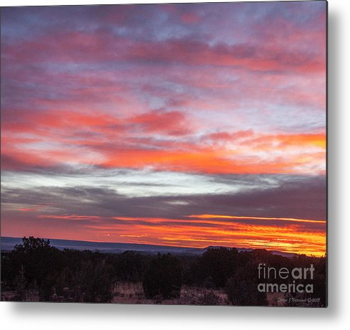 Natanson Metal Print featuring the photograph Splashes Of Color by Steven Natanson