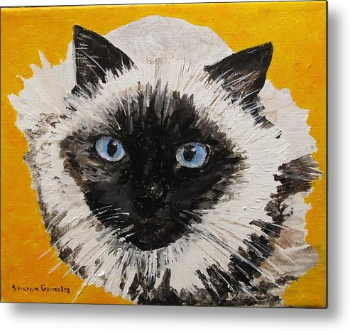 Cat Metal Print featuring the painting Suli Face by Sharon De Vore