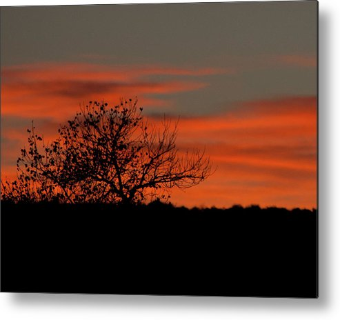 Zion National Park Metal Print featuring the photograph Sunset At Zion by Lawrence Drake