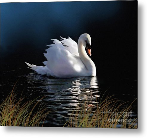 Swan Metal Print featuring the painting Swan Elegance by Robert Foster