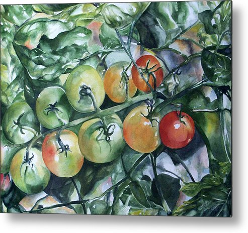 Tomatoes Metal Print featuring the painting Tomatoes In Dad's Garden by Nadine Dennis