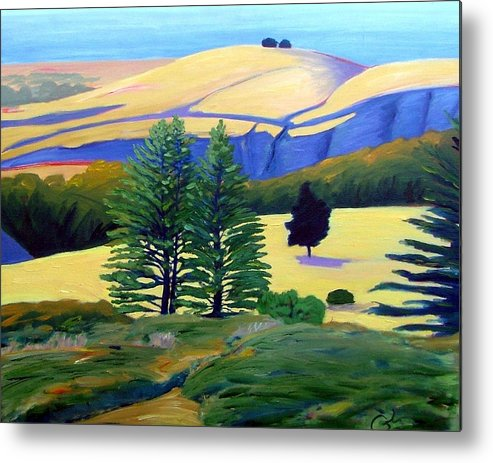 Landscape Metal Print featuring the painting Transitions by Gary Coleman