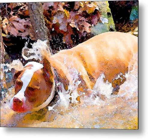 Dpg Metal Print featuring the digital art Waterdog by John Toxey