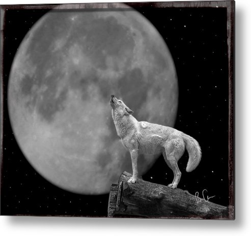 Wolf Metal Print featuring the photograph Wolf And Moon by Brian Adamson