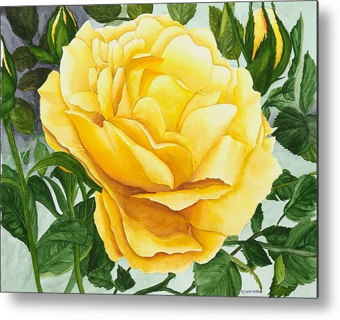 Yellow Rose Watercolor Painting Metal Print featuring the painting Yellow Rose by Robert Thomaston