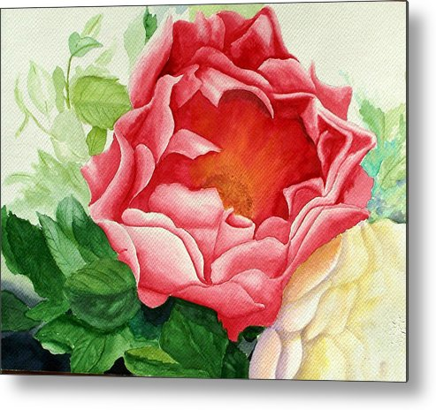 Red Rose Watercolor Painting Metal Print featuring the painting Yes It Is A Rose by Robert Thomaston