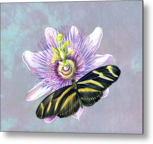 Moths Metal Print featuring the painting Zebra Longwing by Mindy Lighthipe
