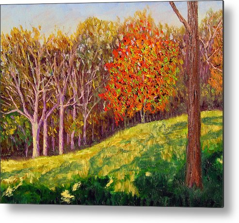 Landscape Metal Print featuring the painting Mooresville 10 11 by Stan Hamilton