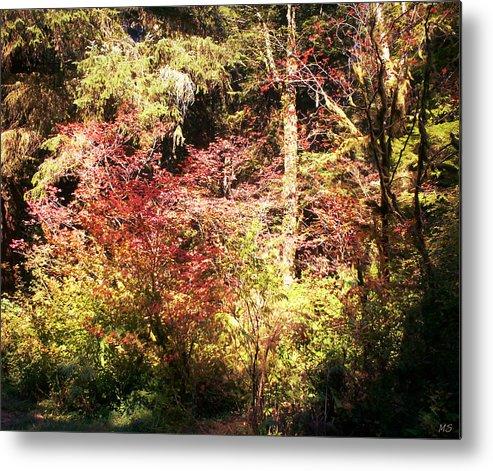 Autumn Metal Print featuring the photograph Autumn Is In The Air by Absinthe Art By Michelle LeAnn Scott