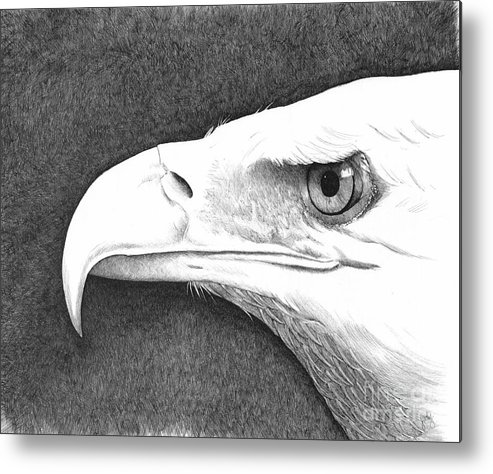 Pen Metal Print featuring the painting Bald Eagle 2 by Judy Horan