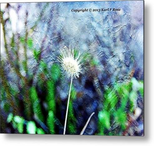 Flowers Metal Print featuring the photograph Flower As A Painting by Karl Rose
