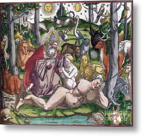 Science Metal Print featuring the photograph Garden Of Eden Historiae Animalium by Science Source