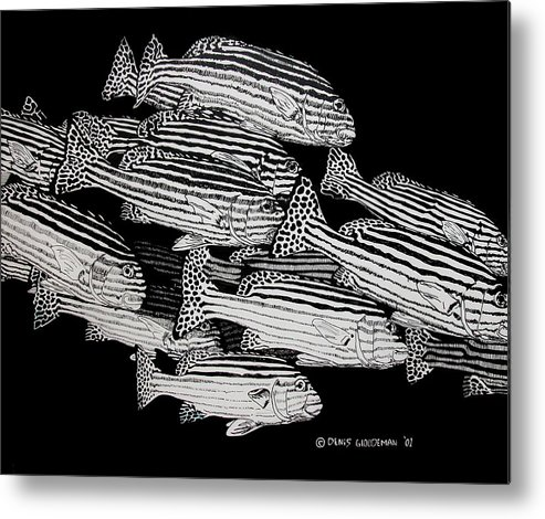 Fish Metal Print featuring the drawing Sweet Lip School by Denis Gloudeman
