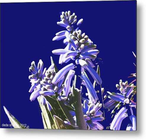 Flowers Metal Print featuring the painting Aloe Vera by Dede Shamel Davalos