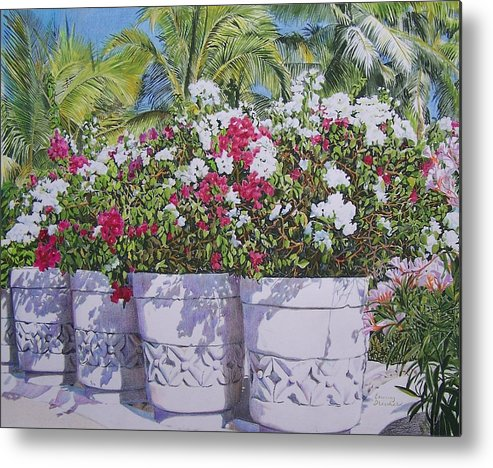Rural Metal Print featuring the mixed media Bougainvillea by Constance Drescher