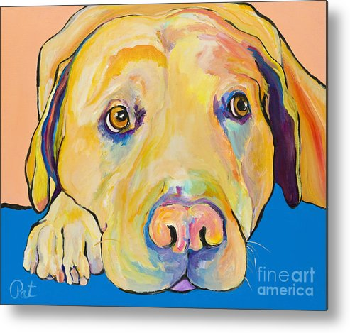 Dog Paintings Yellow Lab Puppy Colorful Animals Pets Metal Print featuring the painting Bath Time by Pat Saunders-White