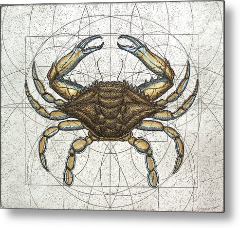 Maryland Metal Print featuring the painting Blue Crab by Charles Harden
