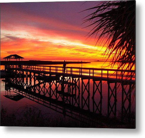 Palms Metal Print featuring the photograph Docking It by Debbie May