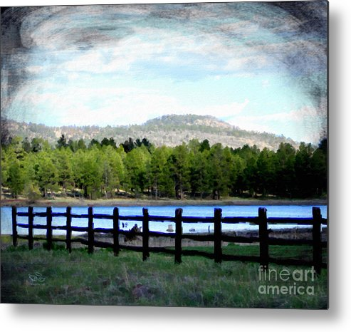 Fence Metal Print featuring the photograph Don't Fence Me In by Beauty For God