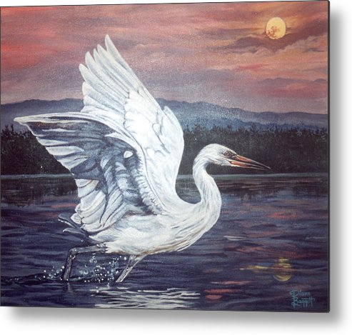Bird Metal Print featuring the painting Egret by Diann Baggett