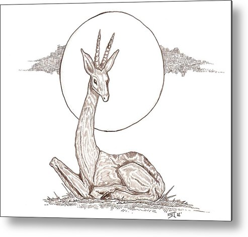 Gazelle Metal Print featuring the drawing Gazelle by Stephen Taylor