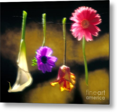 Tulip Metal Print featuring the photograph Hanging Flowers by Tony Cordoza