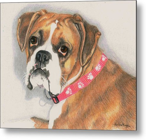 Dog Metal Print featuring the drawing Muzzy by JoAnn Morgan Smith