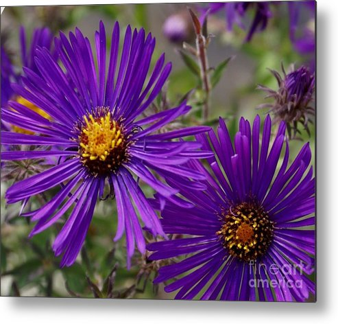 Plant Metal Print featuring the painting My Purple Ways by Debbie May
