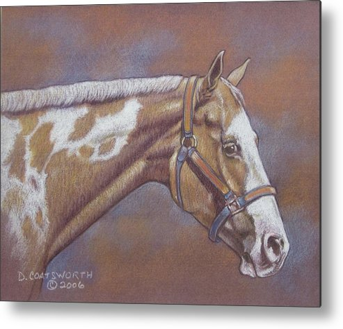 Metal Print featuring the painting Paint Horse by Dorothy Coatsworth