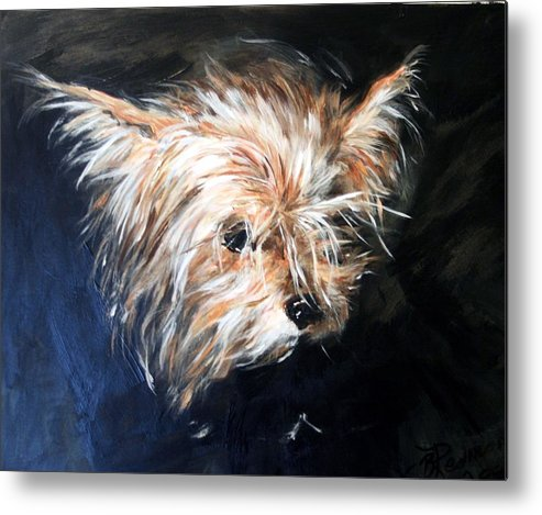 Chorkie Metal Print featuring the painting Pepi by BJ Redmond
