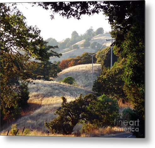 Yellow Metal Print featuring the photograph Rolling Along by JoAnn SkyWatcher
