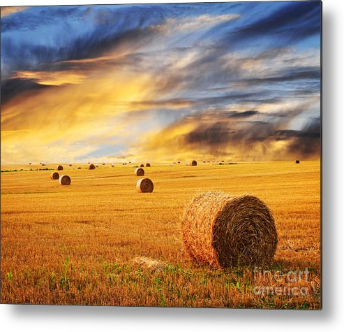 Farm Metal Print featuring the photograph Golden Sunset Over Farm Field With Hay Bales by Elena Elisseeva
