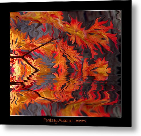 Leaves Metal Print featuring the photograph Color Of Autumn by Terri Tuazon