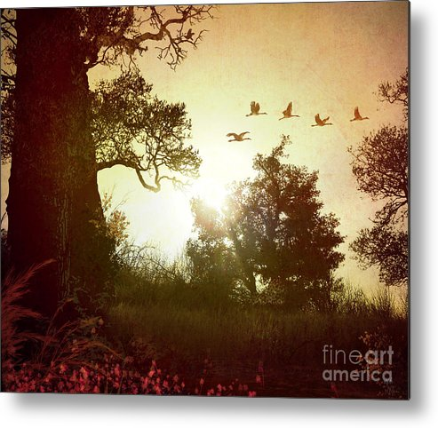 Digital Metal Print featuring the photograph Evening Flying Geese by Peter Awax
