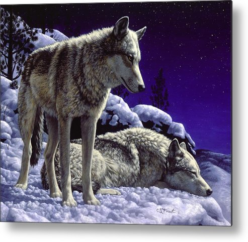 Wolf Metal Print featuring the painting Wolf Painting - Night Watch by Crista Forest