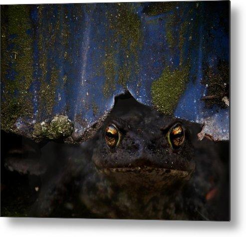 Creepy Metal Print featuring the photograph Behind The Curtain by Odd Jeppesen