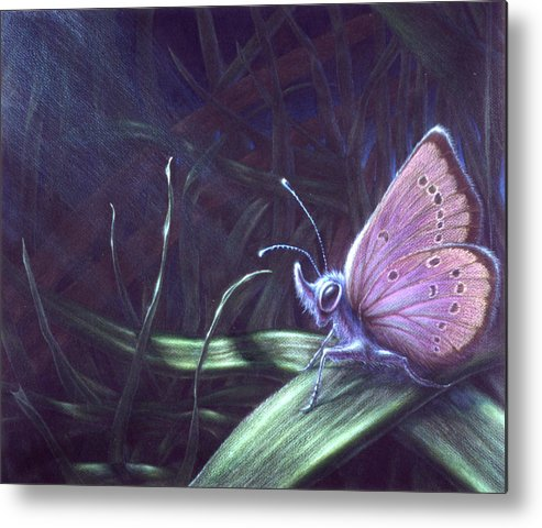 Butterfly Metal Print featuring the painting Purple by Shawn Kawa
