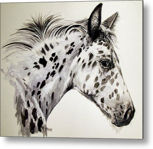 Appaloosa Horse Metal Print featuring the painting Appaloosa by Keran Sunaski Gilmore