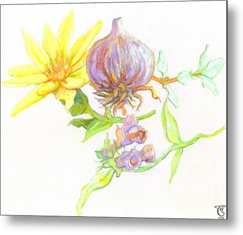 Illustration Metal Print featuring the painting Arnica Garlic Thyme And Comfrey by Cameron Hampton PSA