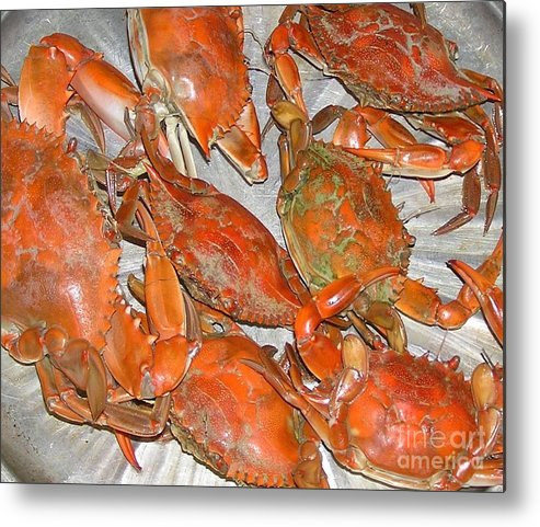 Blue Crabs Metal Print featuring the photograph Blue Crabs by Mary Watson