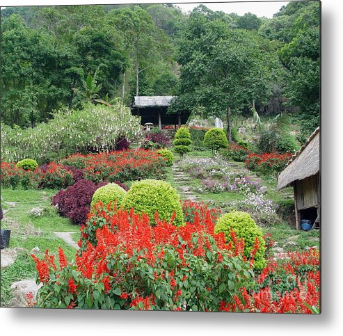 Garden Metal Print featuring the photograph Burma Village Garden by John Johnson
