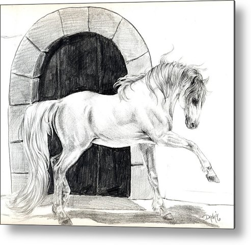 Horse Drawing Metal Print featuring the drawing Collected Balance by Dana John