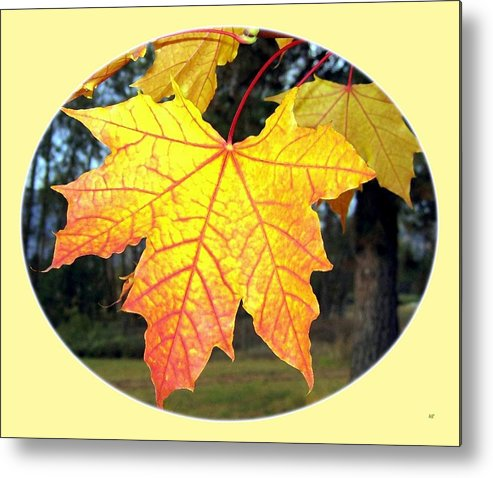 #paintedautumnleaves Metal Print featuring the digital art Fall Finery 2 by Will Borden