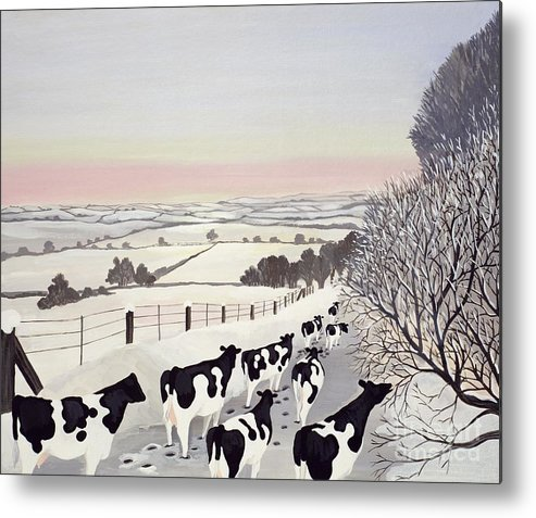Fence; Cow; Cows; Landscape; Winter; Snow; Tree; Trees; Friesians; Animal; Farm Animal Metal Print featuring the painting Friesians In Winter by Maggie Rowe