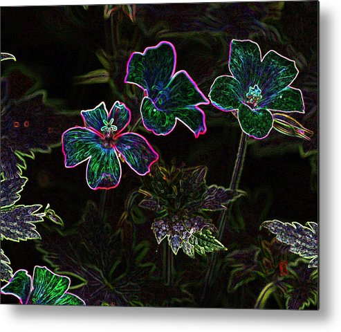 Flowers Metal Print featuring the photograph Glowing Flowers by Scott Gould