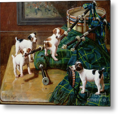 He Who Pays The Piper Calls The Tune By John Hayes (fl.1897-1902) Metal Print featuring the painting He Who Pays The Piper Calls The Tune by John Hayes